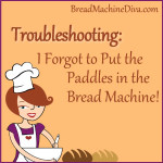 I forgot to put in the bread machine paddles