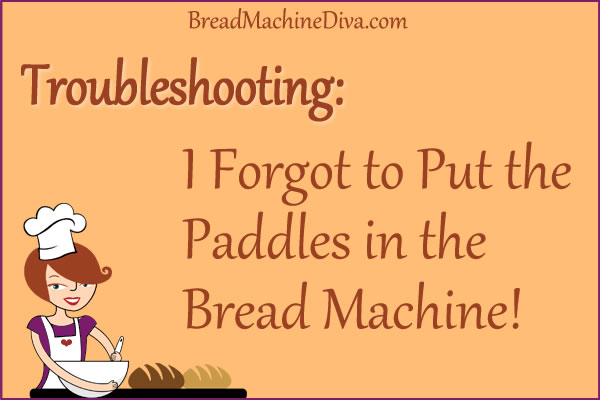 I Forgot to Put the Paddles in the Bread Machine!